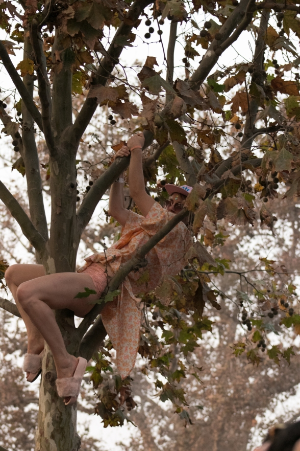 Playboi Carti's set had people climbing trees to get a perfect view